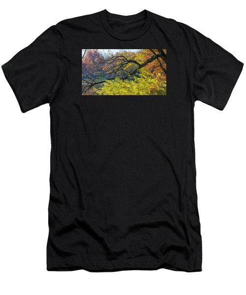 Black Branches Through Bright Autumn Trees Men's T-Shirt (Athletic Fit)