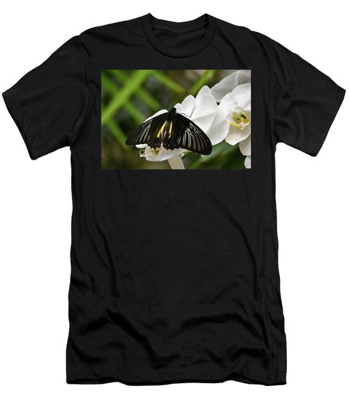 Black Butterfly Men's T-Shirt (Athletic Fit)