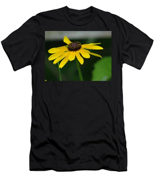 Black Eyed Susan Men's T-Shirt (Athletic Fit)