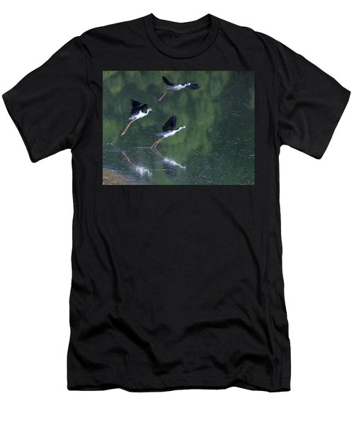 Black-necked Stilts 4302-080917-2cr Men's T-Shirt (Athletic Fit)