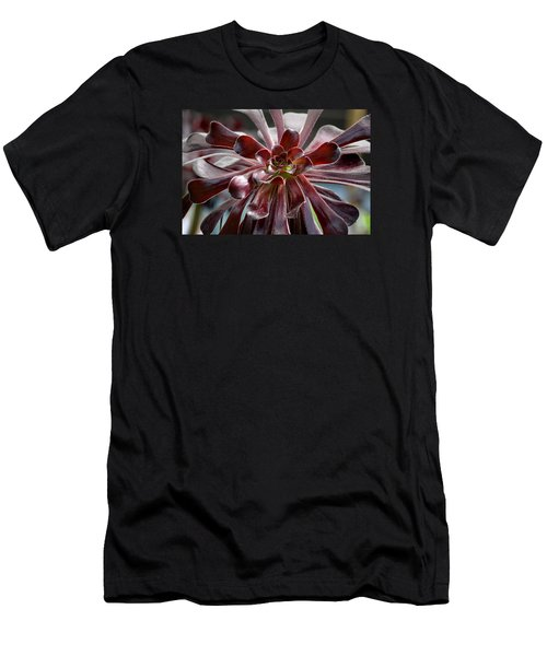 Black Rose Men's T-Shirt (Slim Fit) by Deborah  Crew-Johnson