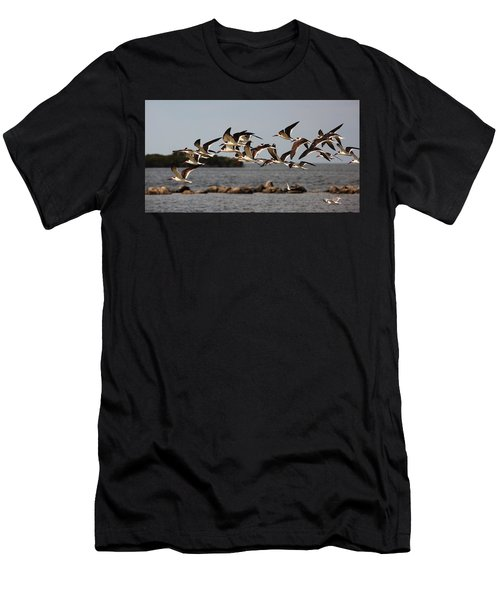 Black Skimmers In Flight Men's T-Shirt (Athletic Fit)