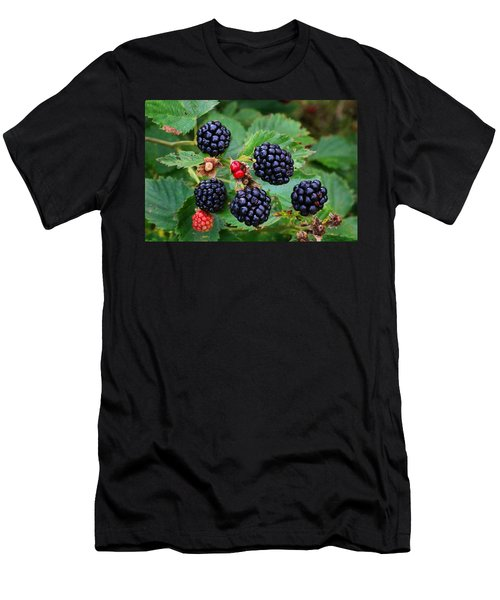 Blackberries 2 Men's T-Shirt (Athletic Fit)