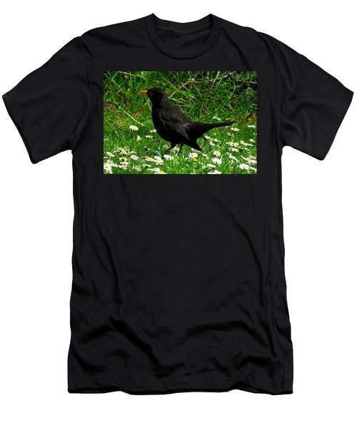 Blackbird Men's T-Shirt (Athletic Fit)