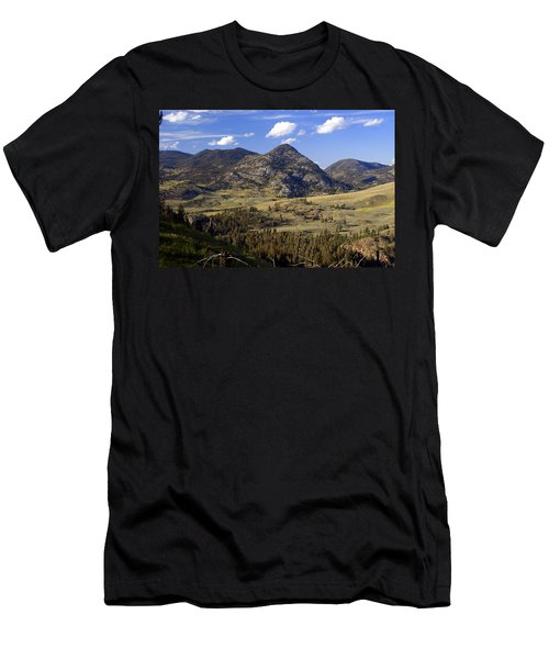 Blacktail Road Landscape 2 Men's T-Shirt (Athletic Fit)