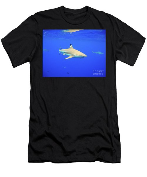 Blacktip Reef Shark Men's T-Shirt (Athletic Fit)