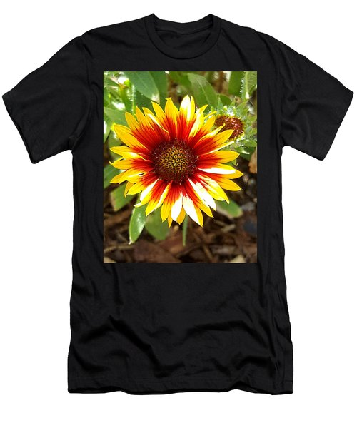 Blanketflower Men's T-Shirt (Athletic Fit)