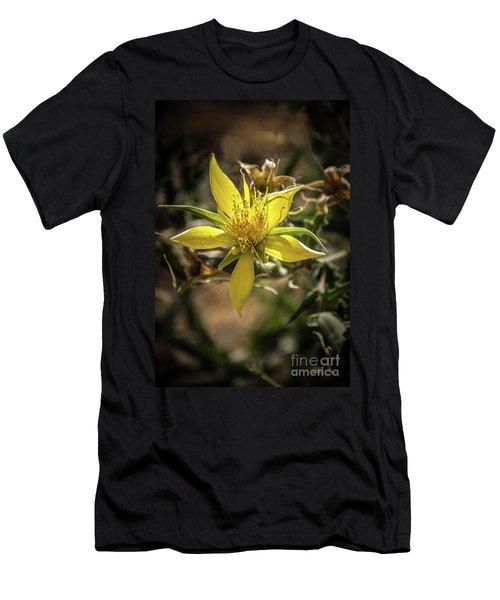 Blazingstar Men's T-Shirt (Athletic Fit)