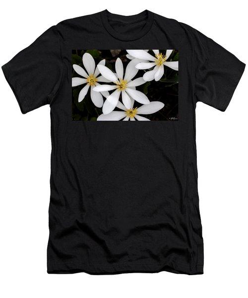Sanguinaria Men's T-Shirt (Athletic Fit)