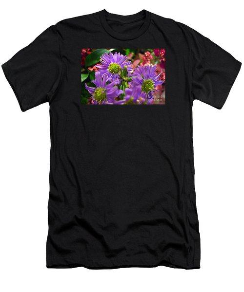 Blooming Asters Men's T-Shirt (Slim Fit) by Merton Allen
