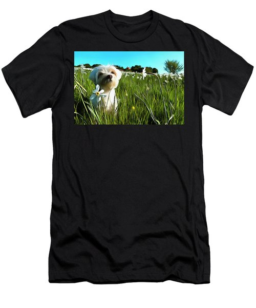 Blooming Daffodils In The Antola Park With Maltese I Paint Men's T-Shirt (Athletic Fit)