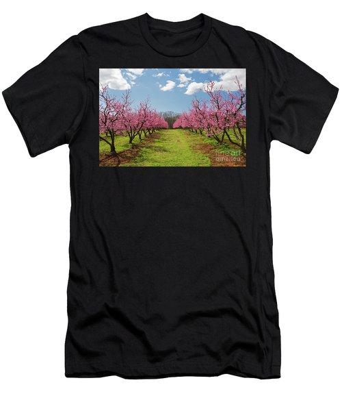 Blooming Peach Orchard 1 Men's T-Shirt (Athletic Fit)