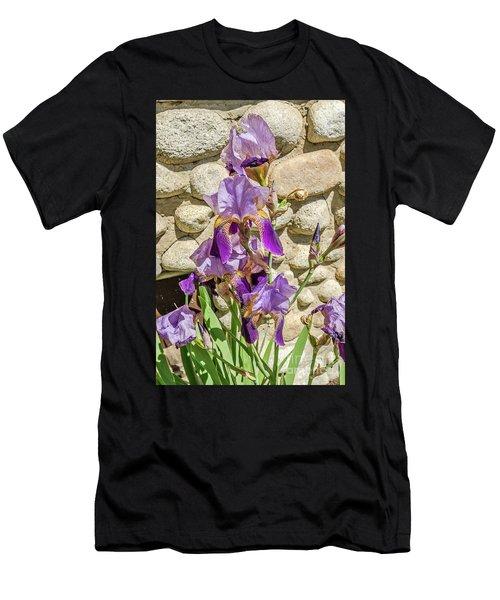 Blooming Purple Iris Men's T-Shirt (Athletic Fit)