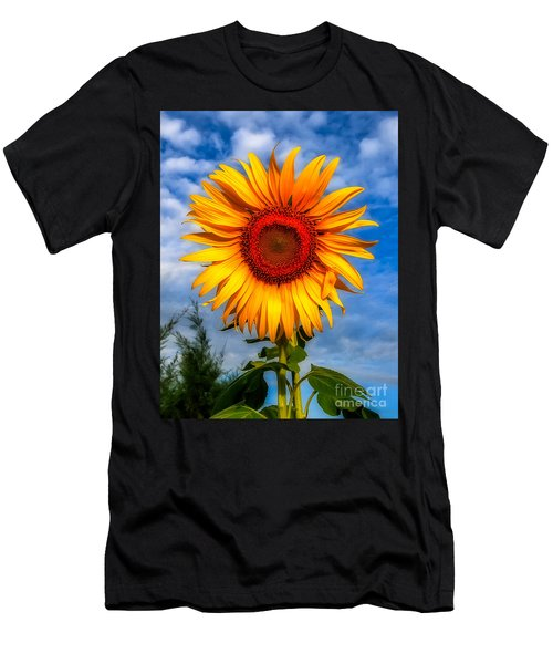Blooming Sunflower  Men's T-Shirt (Athletic Fit)