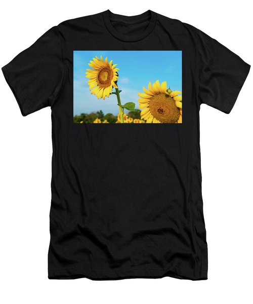Blooming Sunflower In Blue Sky Men's T-Shirt (Athletic Fit)
