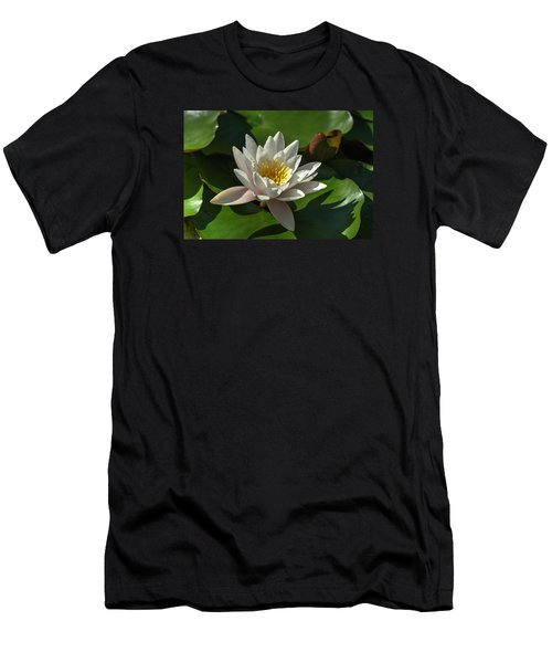 Blossoms And Lily Pads 8 Men's T-Shirt (Athletic Fit)