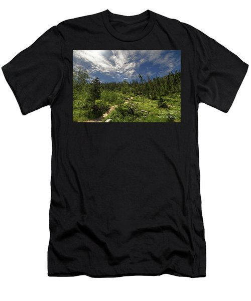Blue And Green Men's T-Shirt (Athletic Fit)