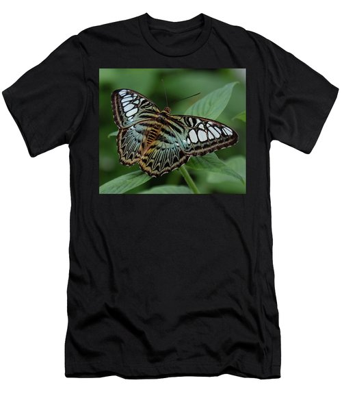 Blue Clipper Butterfly Open Men's T-Shirt (Athletic Fit)
