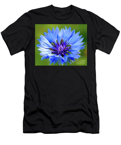 Blue Cornflower Men's T-Shirt (Athletic Fit)