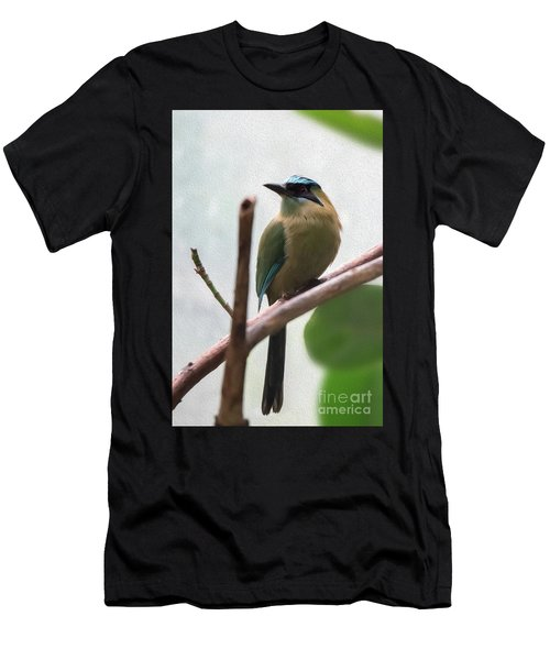 Blue-crowned Motmot Oil Men's T-Shirt (Athletic Fit)