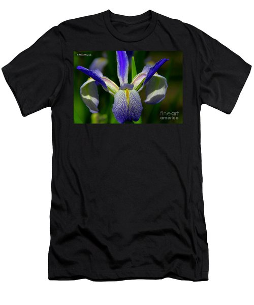 Blue Flag Iris Men's T-Shirt (Athletic Fit)