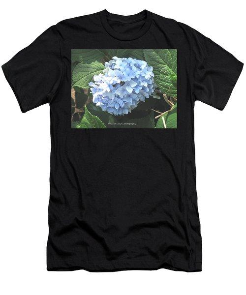 Blue Hydrangnea Men's T-Shirt (Athletic Fit)