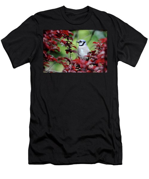 Blue Jay In The Plum Tree Men's T-Shirt (Athletic Fit)