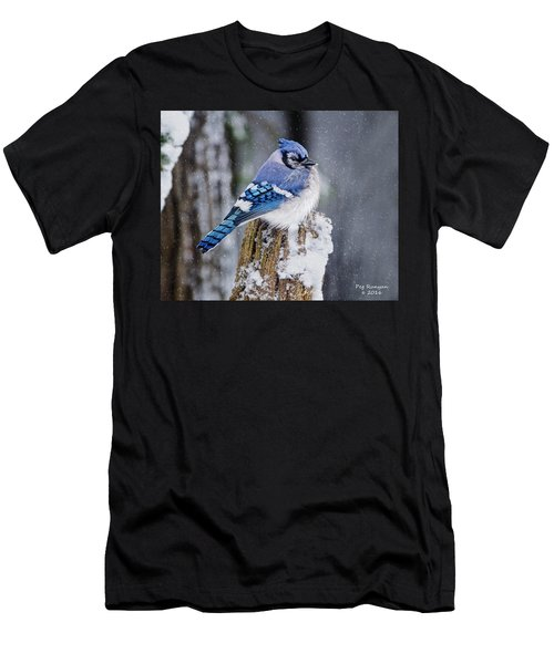 Blue Jay On Snowy Post Men's T-Shirt (Athletic Fit)