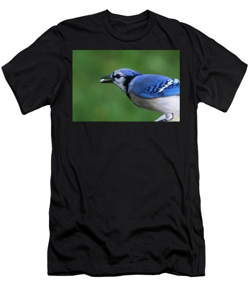 Blue Jay With Seed Men's T-Shirt (Athletic Fit)