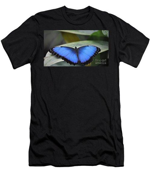 Blue Morpho Butterfly  Men's T-Shirt (Athletic Fit)