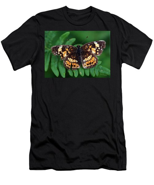 Blue Ridge Butterfly Men's T-Shirt (Athletic Fit)