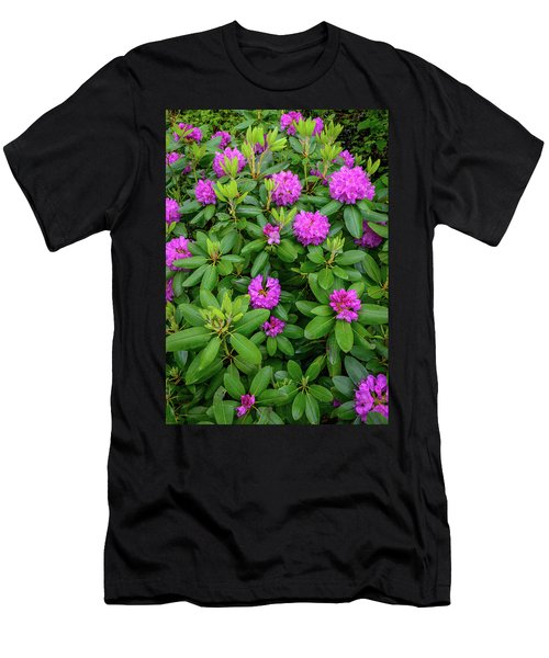 Blue Ridge Mountains Rhododendron Blooming Men's T-Shirt (Athletic Fit)