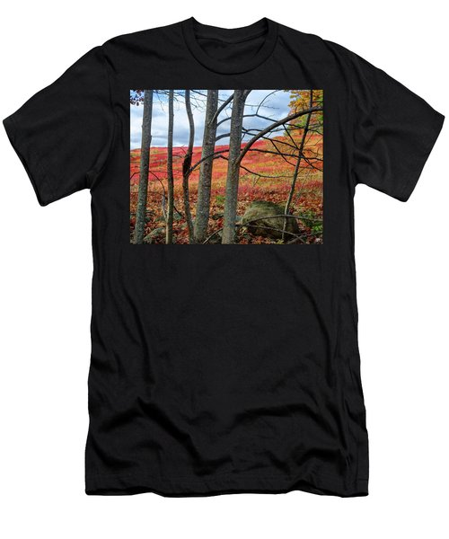 Blueberry Field Through The Wall - Cropped Men's T-Shirt (Athletic Fit)