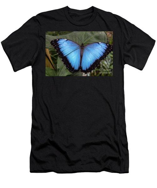 Blue Morph Men's T-Shirt (Athletic Fit)