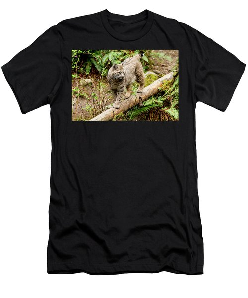 Bobcat In Forest Men's T-Shirt (Athletic Fit)