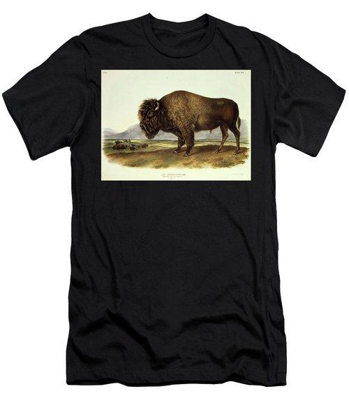 Bos Americanus, American Bison Men's T-Shirt (Athletic Fit)