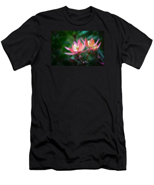 Botanic Garden Of Wales 1 Men's T-Shirt (Athletic Fit)