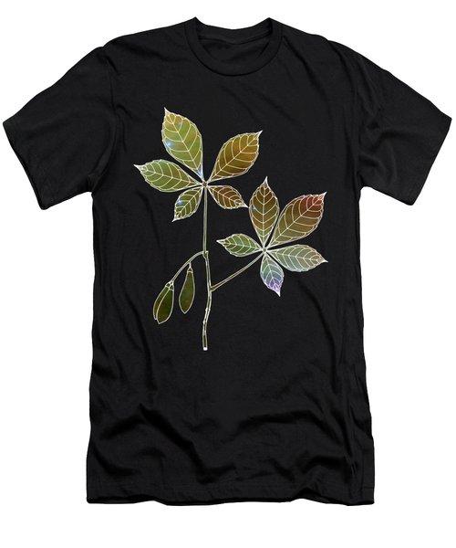Botany 5 Men's T-Shirt (Athletic Fit)