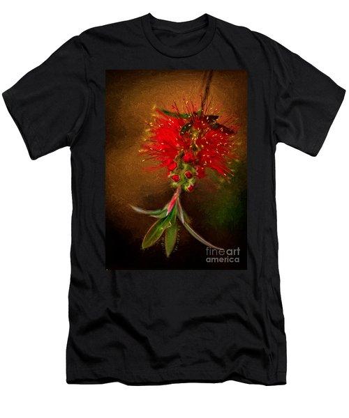 Bottle Brush Flower Men's T-Shirt (Athletic Fit)