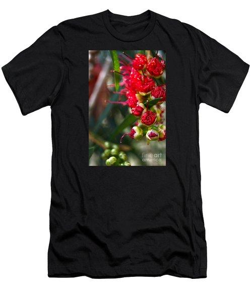 Bottlebrush Men's T-Shirt (Athletic Fit)