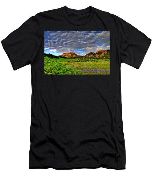 Boulder Spring Wildflowers Men's T-Shirt (Athletic Fit)