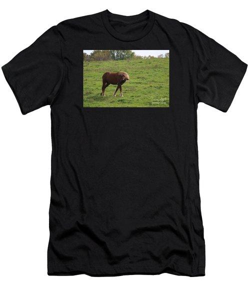 Bow  Men's T-Shirt (Athletic Fit)