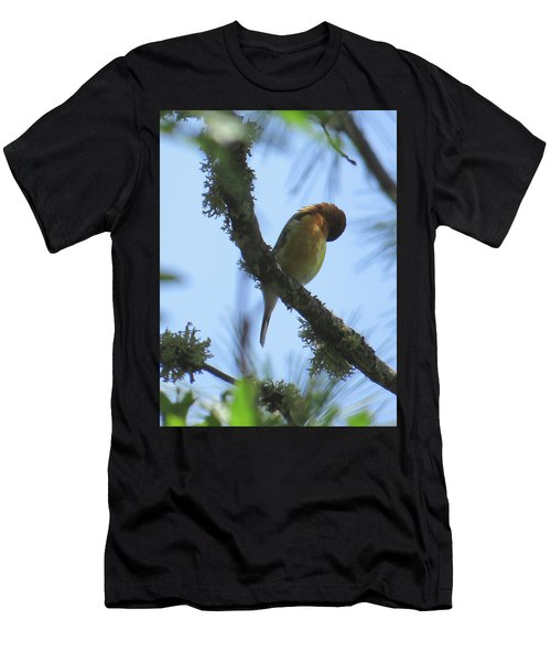 Bird Of Pray - Images From The Garden Men's T-Shirt (Athletic Fit)