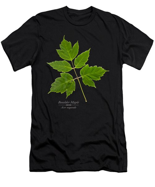 Box Elder Maple Leaf Men's T-Shirt (Athletic Fit)