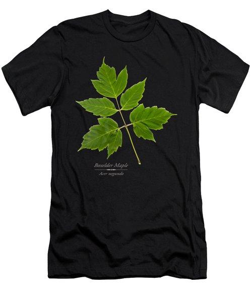 Box Elder Maple Men's T-Shirt (Athletic Fit)