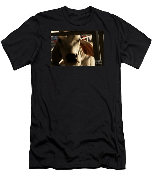 Brahma Love Men's T-Shirt (Athletic Fit)