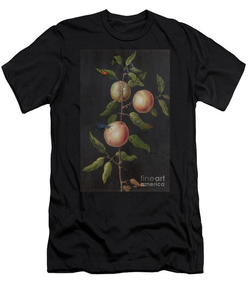 Branch Of A Pear Tree Men's T-Shirt (Athletic Fit)