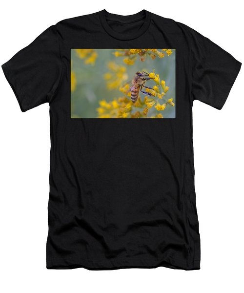 Bright Eyed Bee Men's T-Shirt (Athletic Fit)