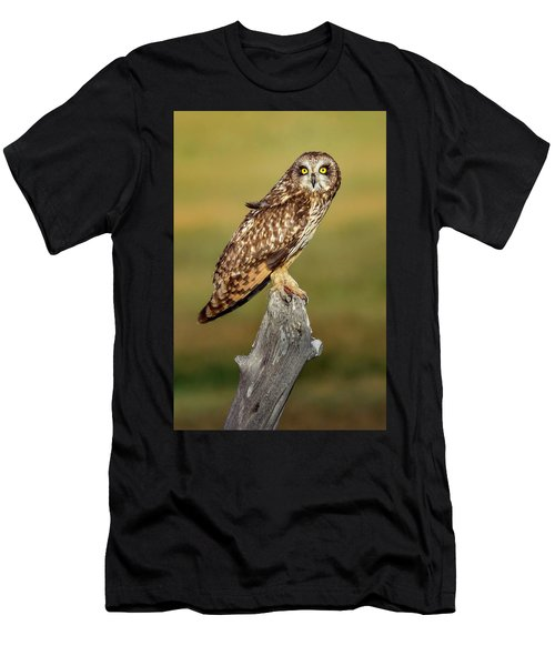 Bright-eyed Owl Men's T-Shirt (Athletic Fit)
