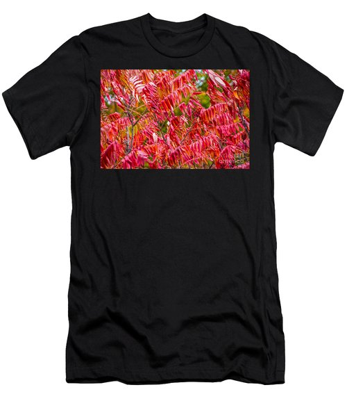 Bright Red Leaves Men's T-Shirt (Athletic Fit)